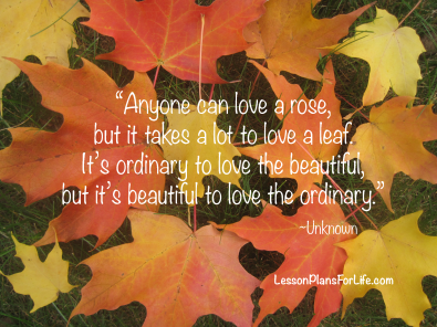 love-the-ordinary